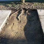 geotextil-anti-raízes-rootbarrier
